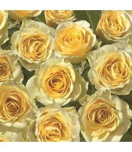 """Салфетка для декупажа SDOG011001 """"Желтые розы"""", 33х33 см, POL-MAK"""