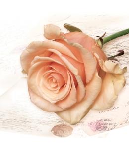 """Салфетка для декупажа SLOG028701 """"Роза"""", 33х33 см, POL-MAK"""