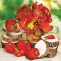 "Салфетка для декупажа SLOG039001 ""Цветы и овощи"", 33х33 см, POL-MAK"