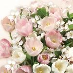 """Салфетка для декупажа SLWI004801 """"Розовые тюльпаны"""", 33х33 см, POL-MAK"""