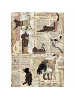 Рисовая бумага для декупажа Кошки, Stamperia формат А4