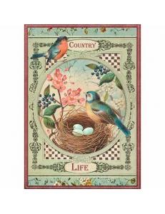 """Рисовая бумага для декупажа Stamperia DFSA4352 """"Птичье гнездо"""", формат А4"""