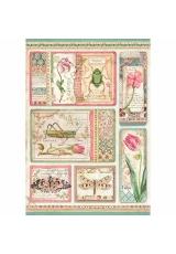 """Рисовая бумага для декупажа Stamperia DFSA4360 """"Ботаника, карточки"""", формат А4"""