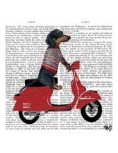 """Салфетка для декупажа """"Уильям, собака на скутере, """", 33х33 см, Германия"""