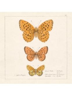 Салфетка для декупажа Винтажные бабочки, 33х33 см, Германия