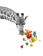 """Салфетка для декупажа """"Счастливый жираф"""", 33х33 см, Германия"""