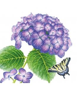 "Салфетка для декупажа ""Гортензия и бабочка"", 33х33 см, Германия"