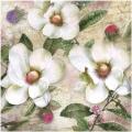 "Салфетка для декупажа ""Белые цветы"", 33х33 см, Германия"