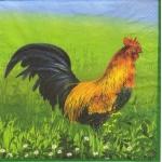 "Салфетка для декупажа ""Петух и курица"", 33х33 см, Голландия"
