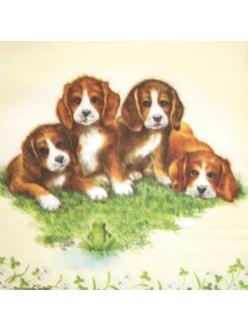 Салфетка для декупажа Четыре щенка, 22х22 см, Голландия