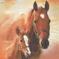"""Салфетка для декупажа HF13307350 """"Лошадь с жеребенком"""", 33х33 см, Голландия"""