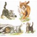 "Салфетка для декупажа HF13309445 ""Семья кошек"", 33х33 см, Голландия"