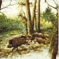 "Салфетка для декупажа ""Кабаны в лесу"", 33х33 см, Голландия"