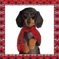 "Салфетка для декупажа ""Собака в шарфике"", 33х33 см, Германия"
