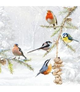 "Салфетка для декупажа ""Зимние птицы на ёлке"", 33х33 см, Ambiente (Голландия)"
