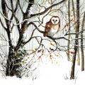 """Салфетка для декупажа """"Сова в зимнем лесу"""", 33х33 см, Ambiente (Голландия)"""