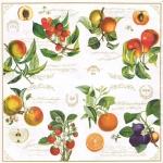 "Салфетка для декупажа ""Фруктовый сад"", 33х33 см, Nuova R2S (Италия)"