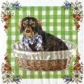 """Салфетка для декупажа """"Собака Валди"""", 33х33 см, Германия"""