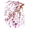 """Трафарет пластиковый KSG365 """"Цветущие ветви и письма"""", 21х29,7 см, Stamperia (Италия)"""