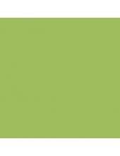 Краска-грунт акриловая DSK0300 Зеленое яблоко, 40 мл, Италия
