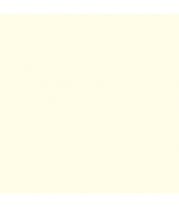 Краска-грунт акриловая DSK0315 Пшеничный, 40 мл, Италия