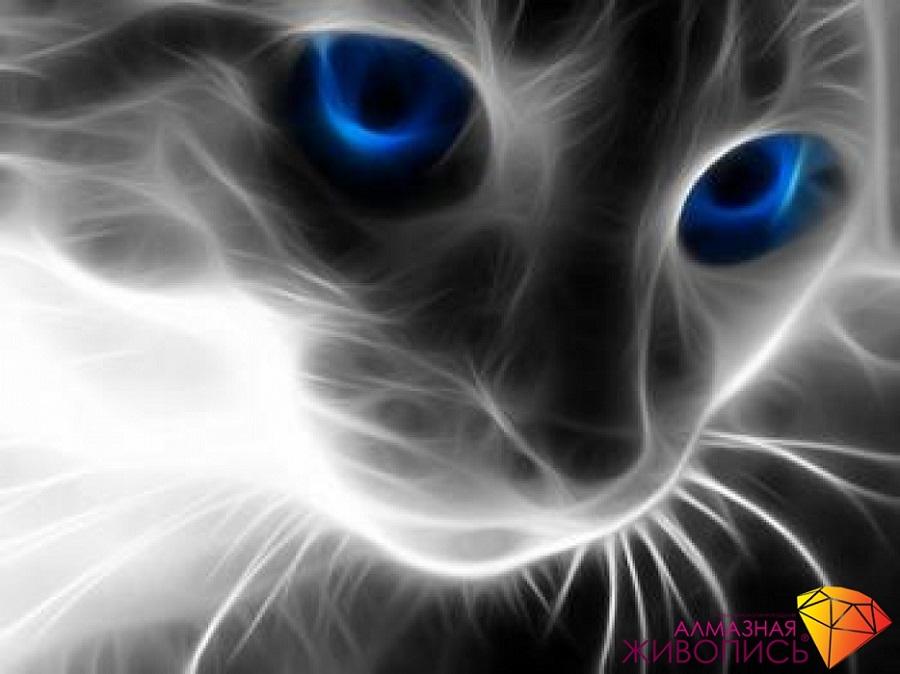 Картина стразами Кошачий взгляд, Алмазная живопись