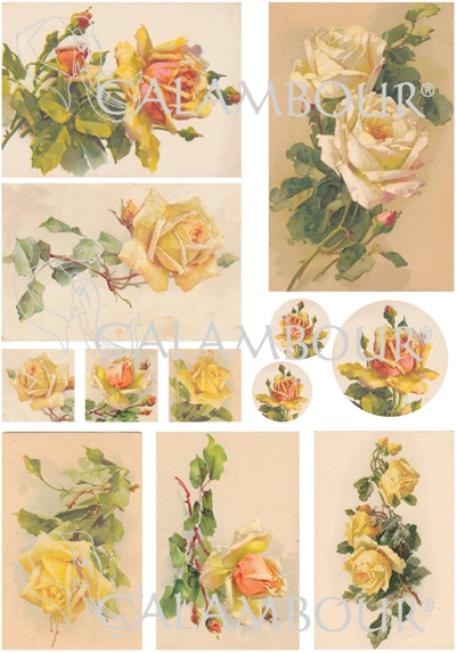 Рисовая бумага для декупажа Calambour DGR 153, Желтые чайные розы, купить