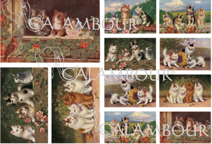 Рисовая бумага для декупажа Винтажные котята на открытках Calambour DG167