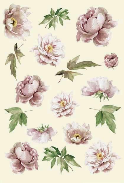 Рисовая бумага для декупажа Calambour, пионы, цветы, купить