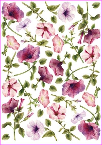 Рисовая бумага для декупажа Calambour Pau 022 цветы Вьюнок