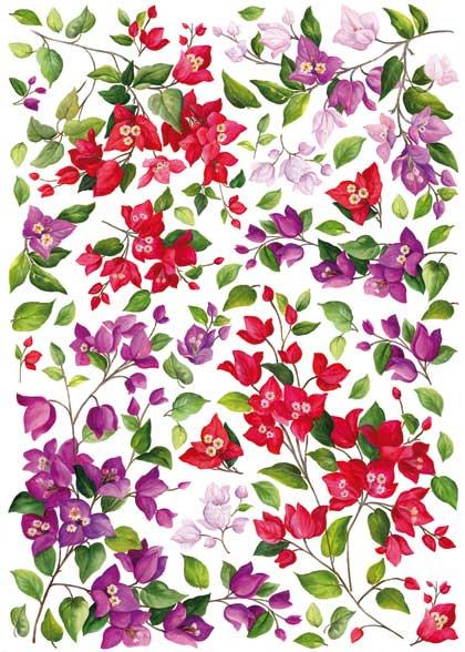 Рисовая бумага для декупажа Calambour Pau 050  цветы