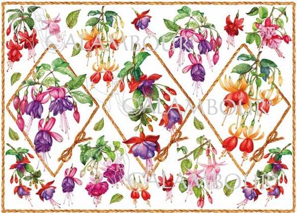 Рисовая бумага для декупажа Calambour Pau 056 цветы Фуксия
