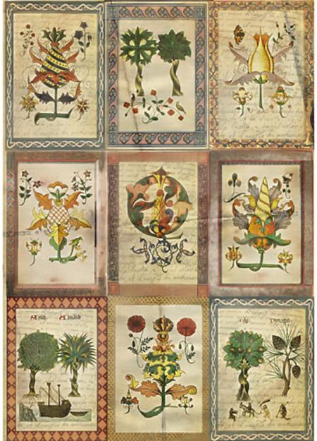Рисовая бумага для декупажа Craft Premier Средневековая ботаника