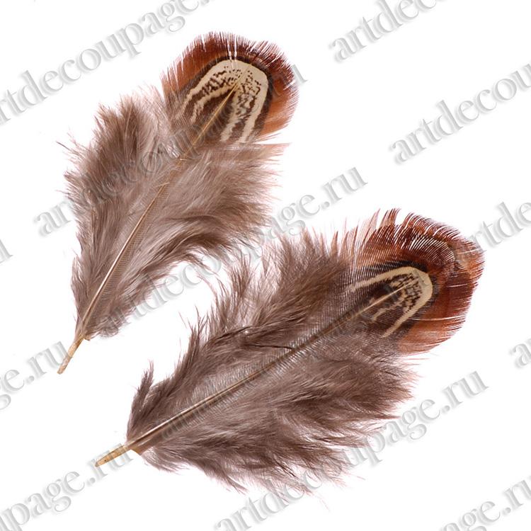 Декоративные перья фазана коричнево-бежевыедля скрапбукинга и декора