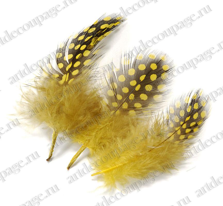 Декоративные перья цесарки, натуральное перо для декора, купить