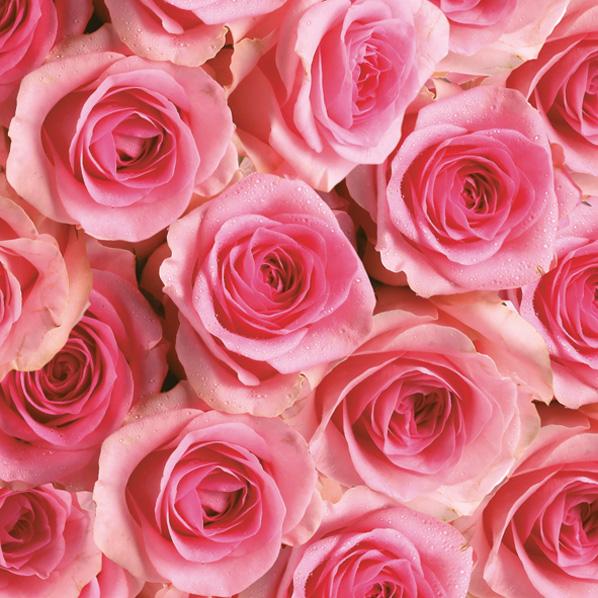 салфетки для декупажа Розы розовые, купить