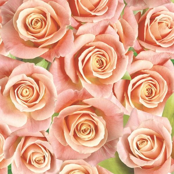 салфетки для декупажа Розы оранжевые, купить