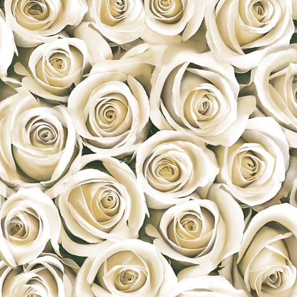 салфетки для декупажа Розы белые, купить