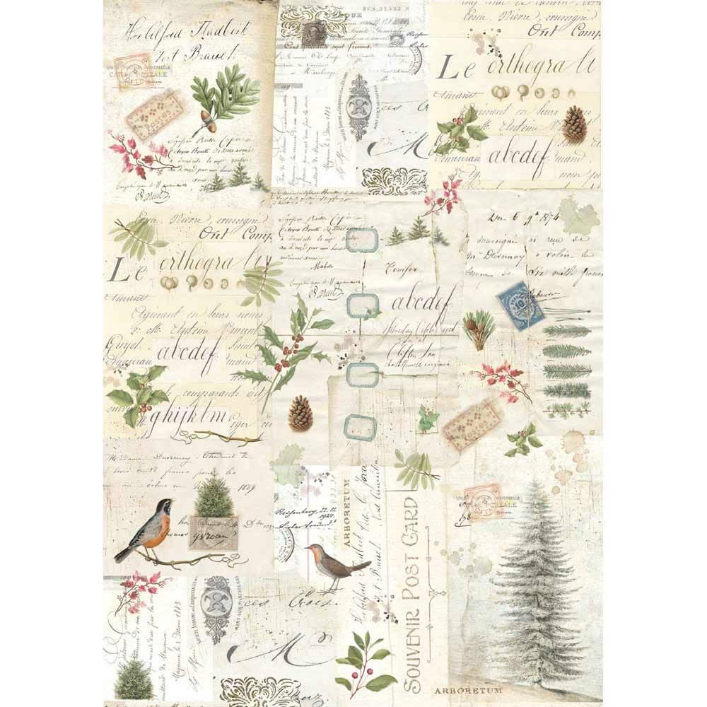 Рисовая бумага для декупажа Stamperia DFSA3009 Зимняя ботаника