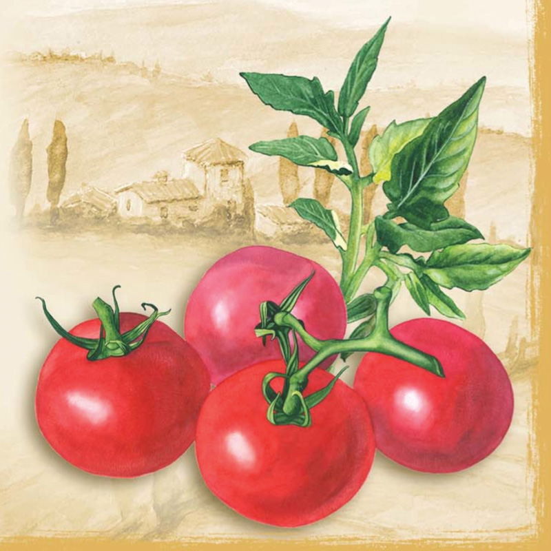 Салфетки для декупажа Томаты, помидоры,овощи, текст, винтаж, купить, АртДекупаж